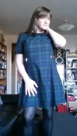 Anna Secret Poet Green Plaid Dress 1